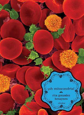oh-mitocondria